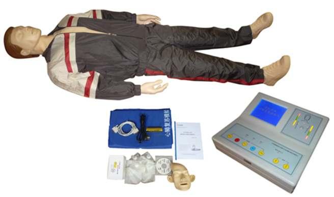 心肺复苏模型,心肺复苏人体模型 上海硕博 专业生产人体医学模型